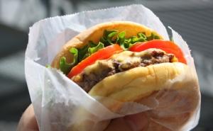 shake_shack_burger_v1_460x285